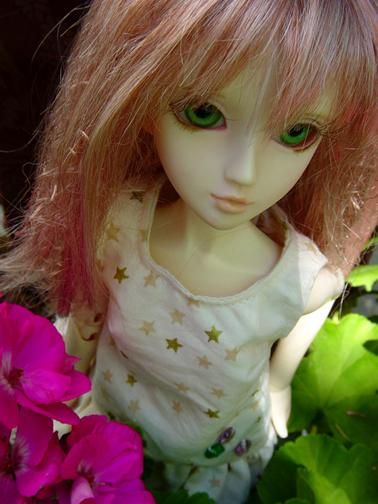 geranium5x7